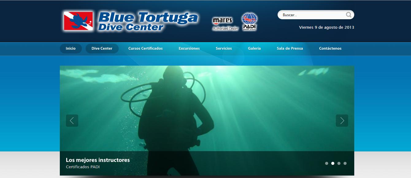 diseño web - Blue Tortuga